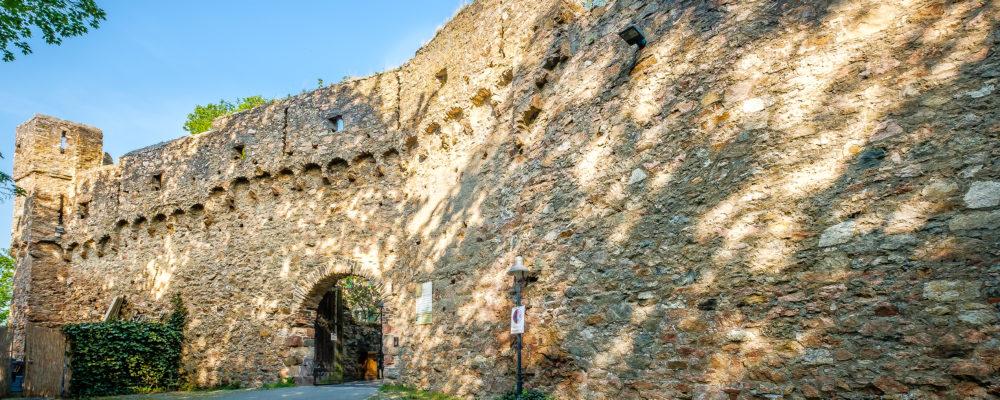 So erreichen unsere gäste der Ferienwohnung das Schloss Auerbach