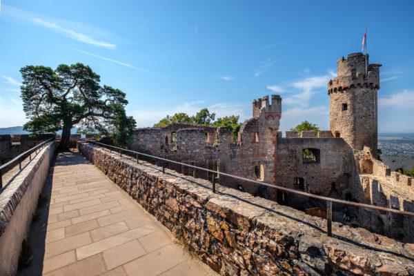 Sagenkiefer und Südturm auf Schloss Auerbach