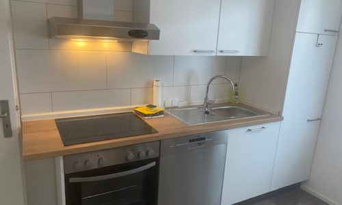 Voll ausgestattete Küche mit Herd, Spülmaschine und Mikrowelle
